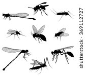 Silhouettes Of Flying Insects....