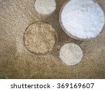 paddy rice and rice | Shutterstock . vector #369169607