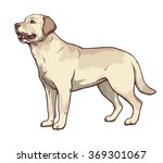 Illustration Of Yellow Dog...