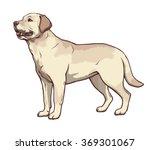 Illustration Of Yellow Dog...