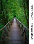 Small photo of Bridge into the forest, Parco dell' Adda