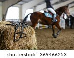 Horse Equipment Lying On A...