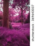 Small photo of Stunning alternate colored surreal forest woodland landscape