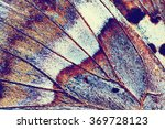abstract background   wing of... | Shutterstock . vector #369728123