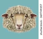 Sheep Portrait. Illustrated...