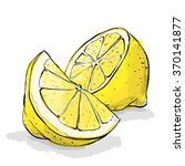 hand draw of lemon. vector... | Shutterstock .eps vector #370141877
