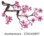 watercolor hand drawn branch of ... | Shutterstock . vector #370145897