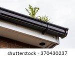 Plants Growing In Blocked Gutter