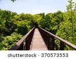 bridge in forest.hiking trail. | Shutterstock . vector #370573553