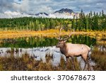 jasper national park in the... | Shutterstock . vector #370678673