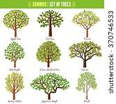 Set Of Summer Trees On White...
