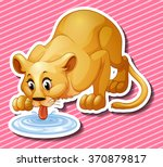 cute lion drinking water from... | Shutterstock .eps vector #370879817