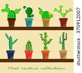 Cactus Flat Collection. House...