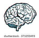 brains | Shutterstock . vector #371053493