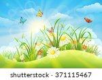 Spring Summer Meadow Backgroun...