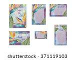 tropical wedding invitation... | Shutterstock . vector #371119103