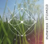 sacred geometry. mathematics ... | Shutterstock .eps vector #371144213