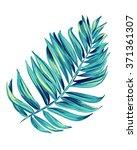 vector illustration of a... | Shutterstock .eps vector #371361307
