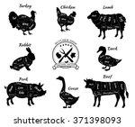 set a schematic view of animals ... | Shutterstock .eps vector #371398093