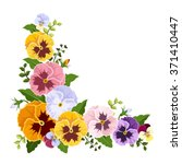 Vector Colorful Pansy Flowers...