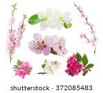 Set Of Fresh Flowers  Tree...