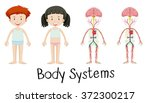body systems of boy and girl... | Shutterstock .eps vector #372300217