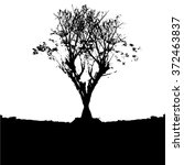 trees in silhouettes.vector | Shutterstock .eps vector #372463837