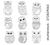 nine owls design for coloring... | Shutterstock .eps vector #372829063