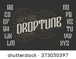 retro font with decorative... | Shutterstock .eps vector #373050397