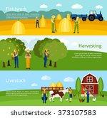 farming 3 flat horizontal... | Shutterstock . vector #373107583