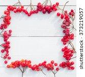 border of dry viburnum on white ... | Shutterstock . vector #373219057