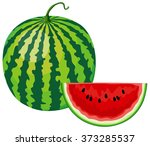 watermelon  slice of watermelon | Shutterstock .eps vector #373285537