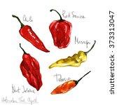 watercolor food clipart  ... | Shutterstock . vector #373313047