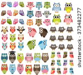 Owls And Owlets Set