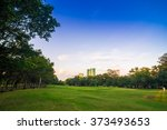 beautiful green meadow in the... | Shutterstock . vector #373493653