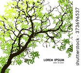 background tree branches. vector   Shutterstock .eps vector #373696537