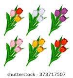 Tulip Set