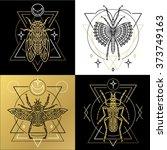 insect spiritual geometric...   Shutterstock .eps vector #373749163