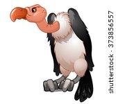 vulture. vector.