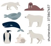 arctic and polar animals vector ...