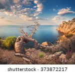 Stock photo sunrise in mountains with old tree cloudy sky and forest sunny morning in crimea beautiful 373872217