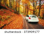 car on a forest path | Shutterstock . vector #373909177