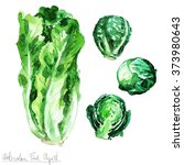 watercolor food clipart  ...   Shutterstock . vector #373980643