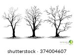 black tree silhouettes on white ... | Shutterstock .eps vector #374004607