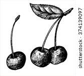 hand drawn cherries  vintage... | Shutterstock .eps vector #374139097