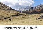 peruvian landscape | Shutterstock . vector #374287897
