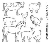 Animal Hand Drawn Vector Set....