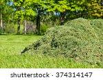 Pile Of Freshly Cut Grass In...