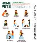vector flat illustration...   Shutterstock .eps vector #374341747