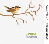 spring branch with flowers and... | Shutterstock .eps vector #374607997